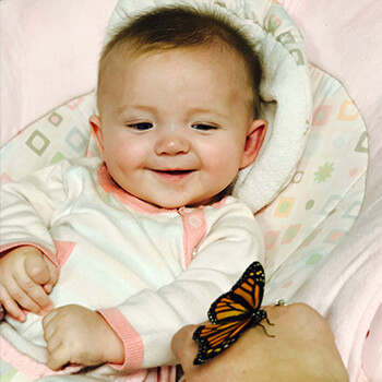 Infant seeing butterfly at Toddle Inn