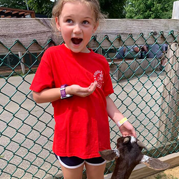 Summer adventures at Smiling Hill Farm from Toddle Inn